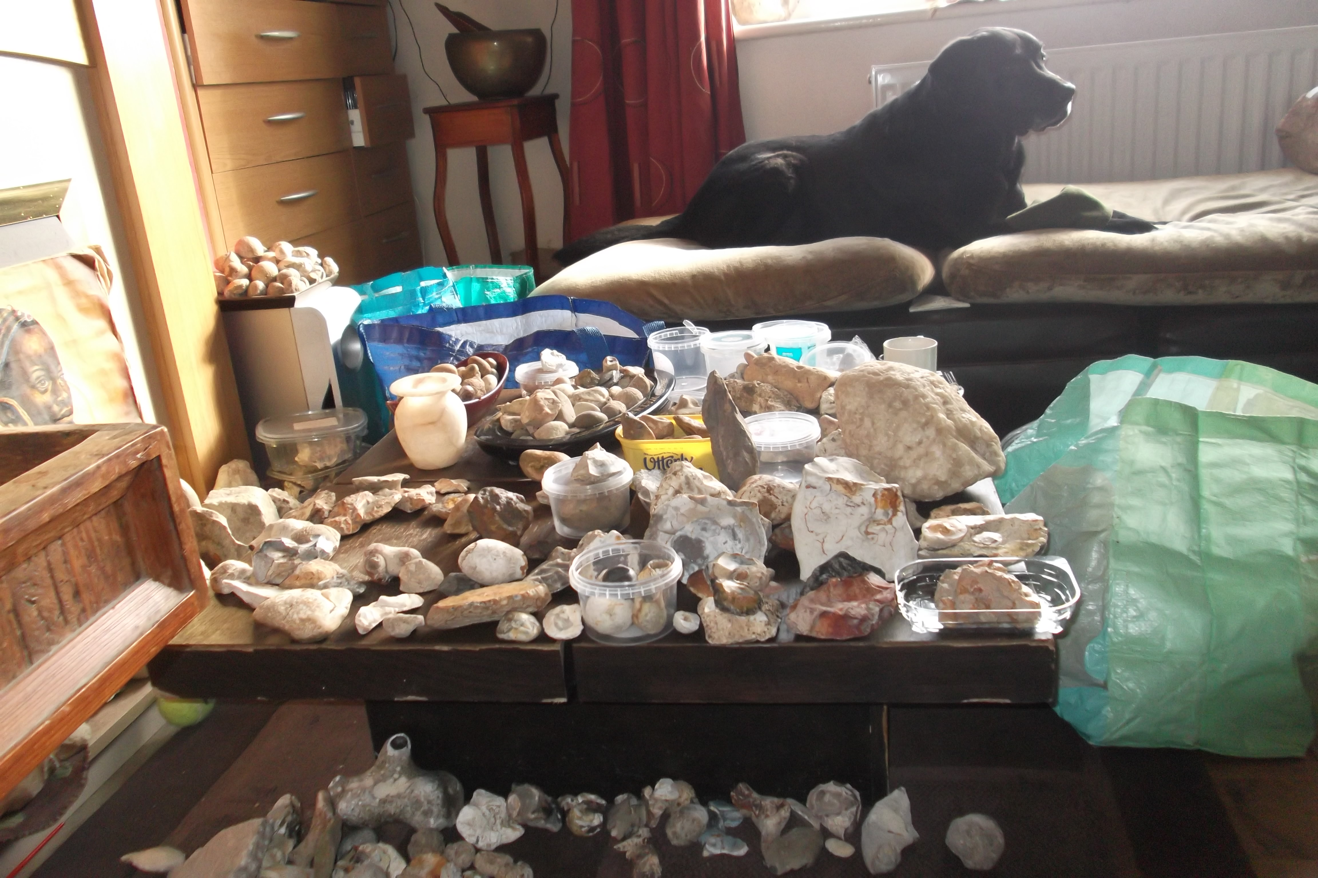 Finds collection